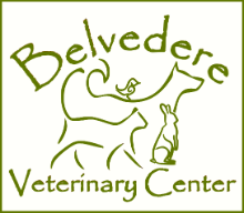 Belvedere Veterinary Center Baltimore